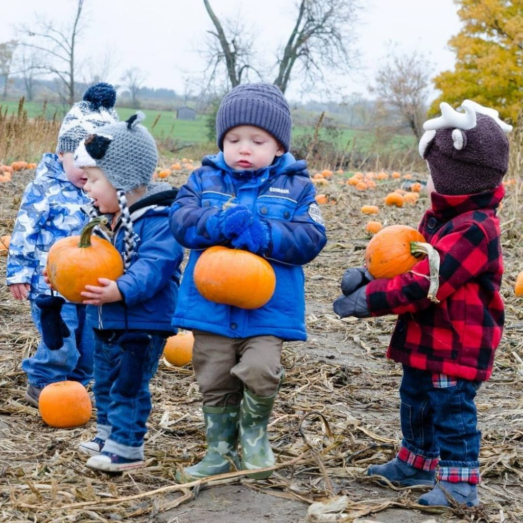 Pumpkin Patch Conference